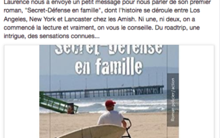 Le site Lost In the Usa a publié sur son FB un  article sur le livre de l'auteur Laurence Castaner